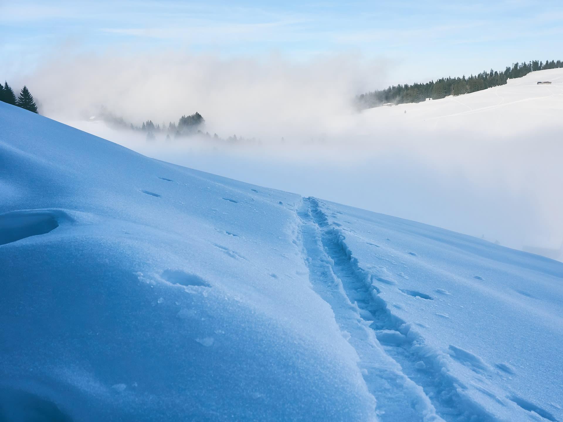alle fjellski støvler vinterferiesalg