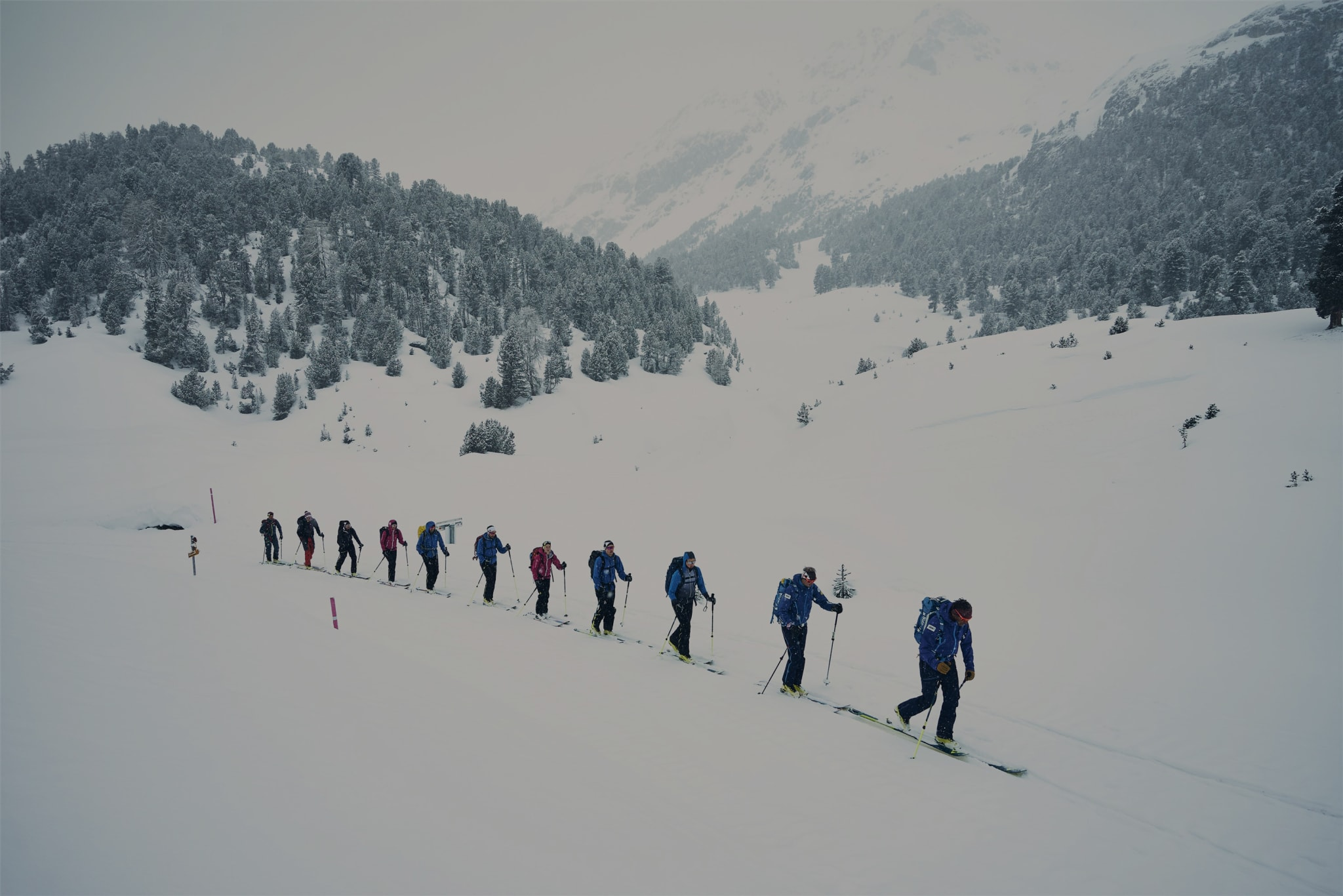 fjellski staver vinterferie