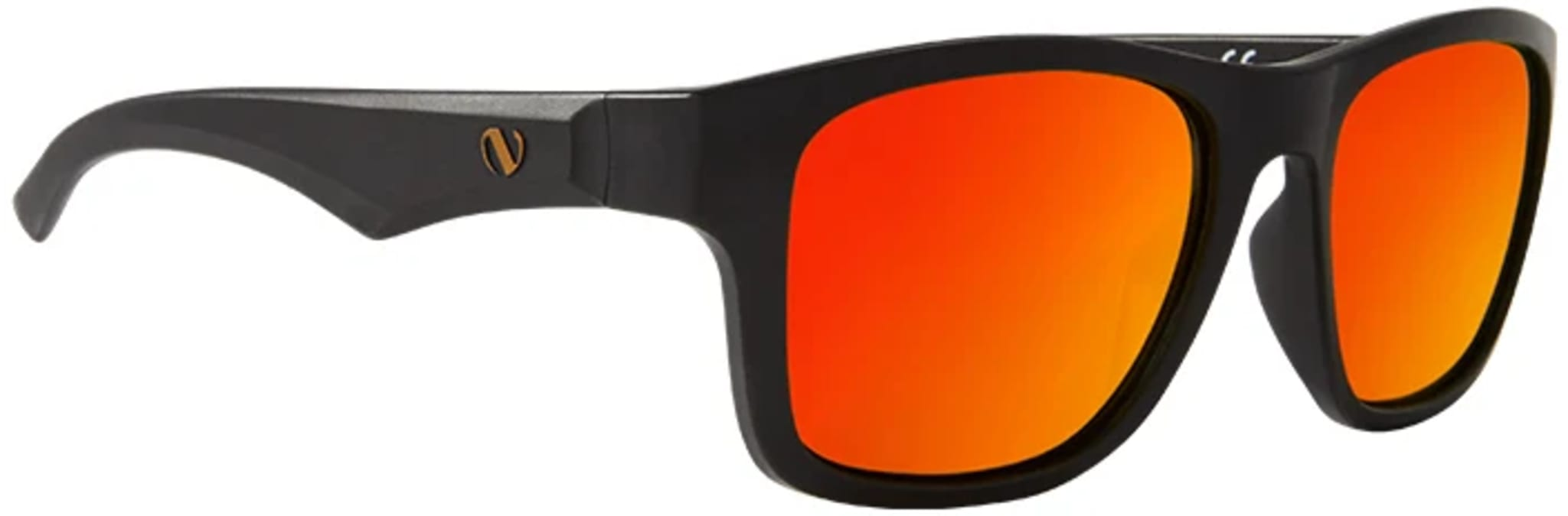 Daycruiser Polarized